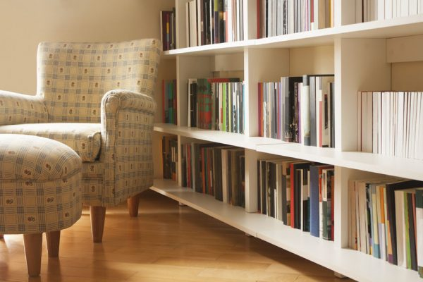 Stylish Ideas to Decorate Your Bookshelves